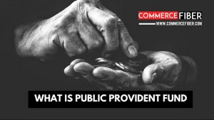 Read more about the article PPF क्या है? Public Provident Fund की जानकरी